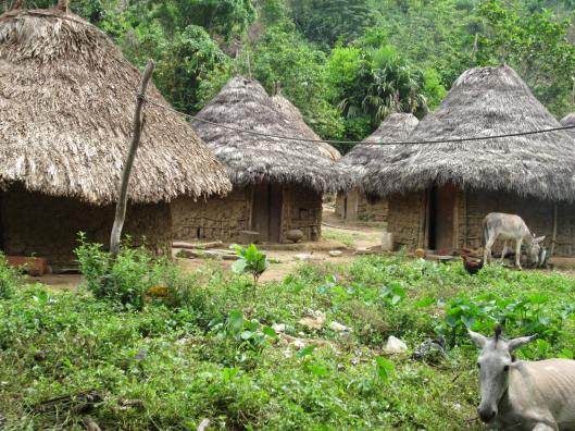 Kogi people and their villages