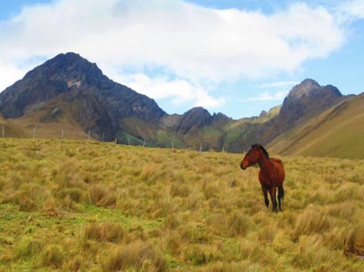 Volcan Ruminahui