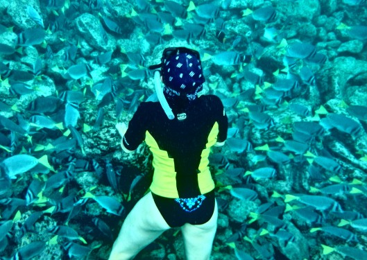 Me and a giant school of fish