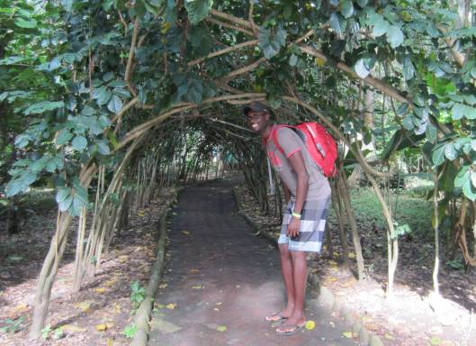 Kwame - so tall he has to bend over to get through a vine-covered walkway
