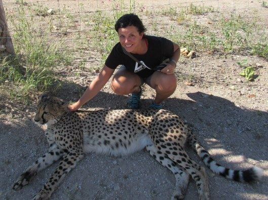 "Stroking one of the ""pet"" cheetahs...not that I approved of the place"