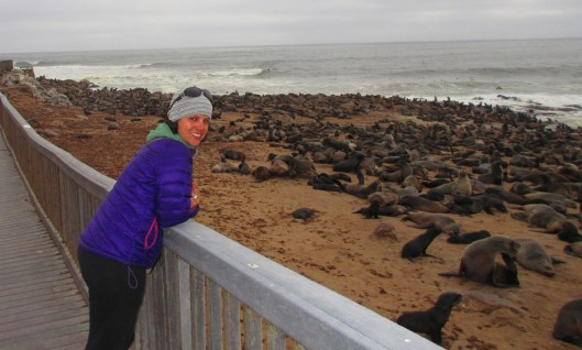 The seal colony on the Skeleton Coast