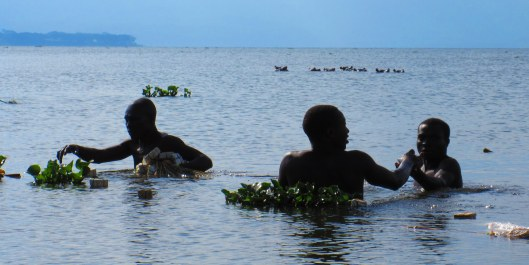 Crazy fishermen busy working not more than twenty meters from the hippos