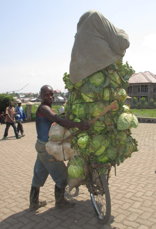 Man off to sell cabbages loaded onto his bike on the DRC border